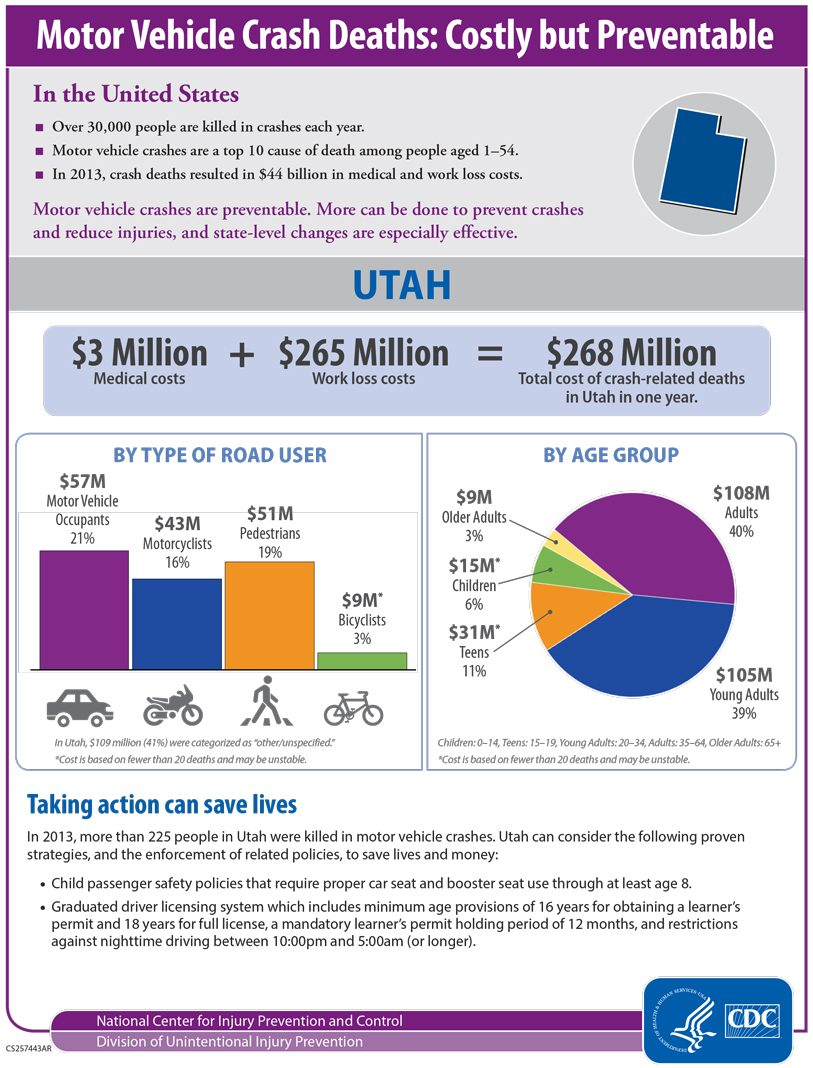 Sample Cost of Crashes Infographic Fact Sheet
